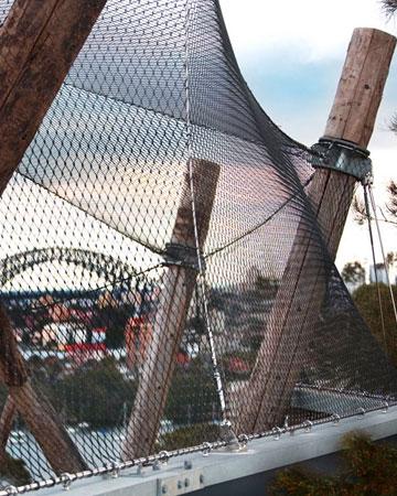 Taronga Zoo Sydney - Chimpanzee Enclosure