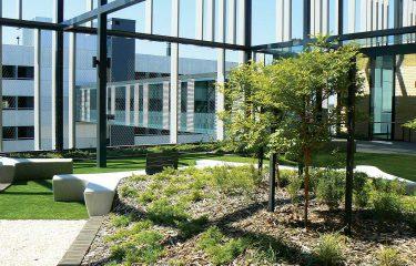 Fiona Stanley Hospital Rooftop Gardens