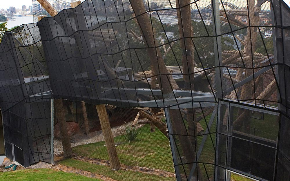 Ronstan was fully responsible for the design and installation of the chimpanzee zoo enclosure including masts, cables, wire mesh and non-climb panels. Installation of these elements called for careful planning and execution and required the use of a full birdcage scaffold inside the structure to enable installers to deal with the mesh's unique and complex behaviour.
