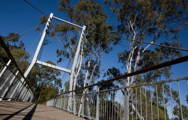 Cable Stayed Bridge - Berrinba Wetlands