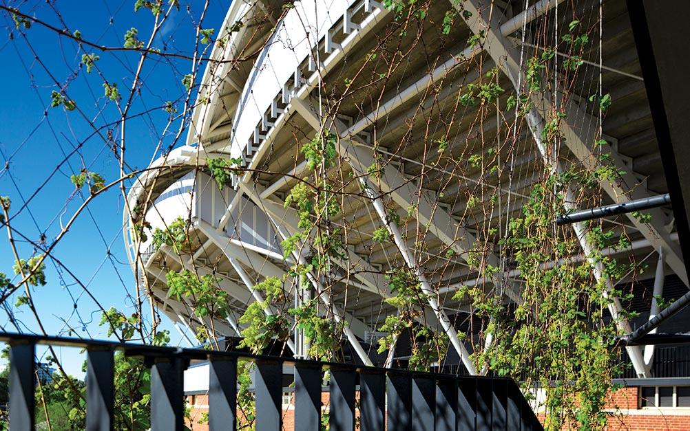 Adelaide Oval X-Tend Mesh vertical greening