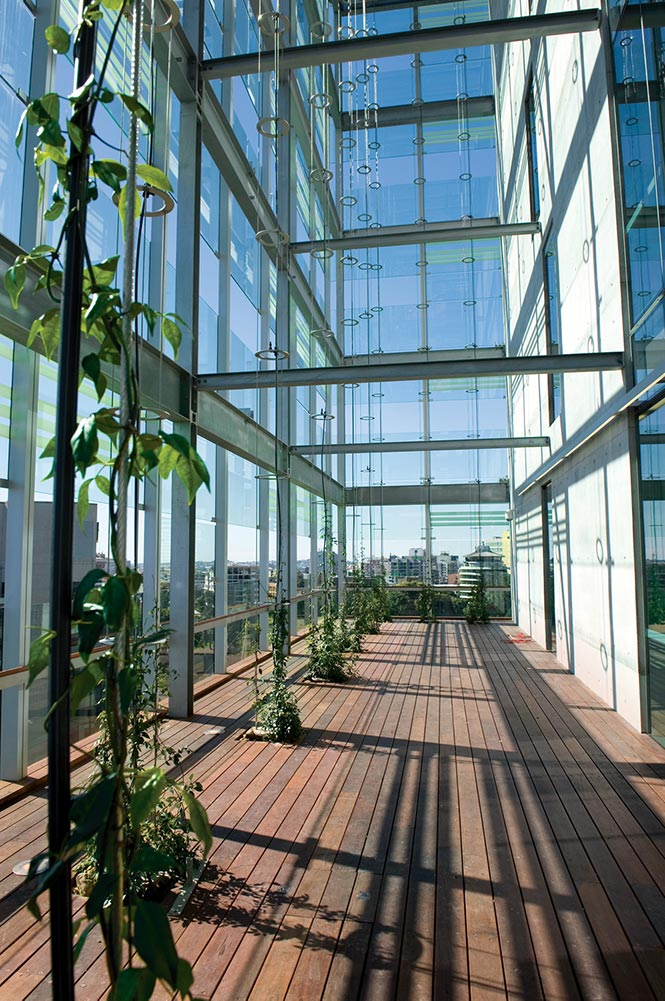 Making full use of natural light, the public spaces, courtrooms, and private offices open up to these double façade courtyards where the inclusion of garden and Ronstan Vertical Garden Green Sculptures responds to the character of the sub-tropical environment in Brisbane, and promotes healthy workplaces.