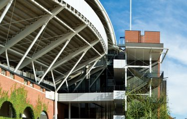 Adelaide Oval Climbing Vines