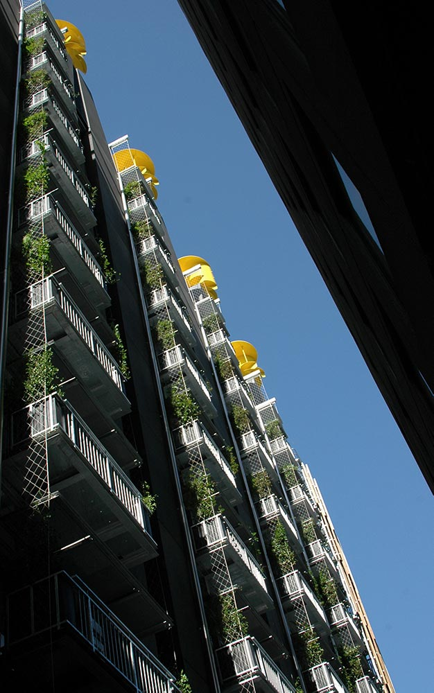 Tensioned stainless steel cables and mesh provided the Council House 2 facade structural greening system upon which plants could flourish